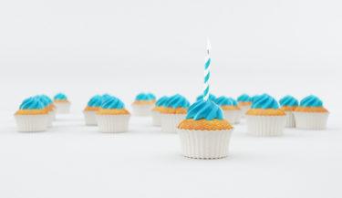 ブログ開設1周年|立ち上げ&閲覧数TOP5&反省点